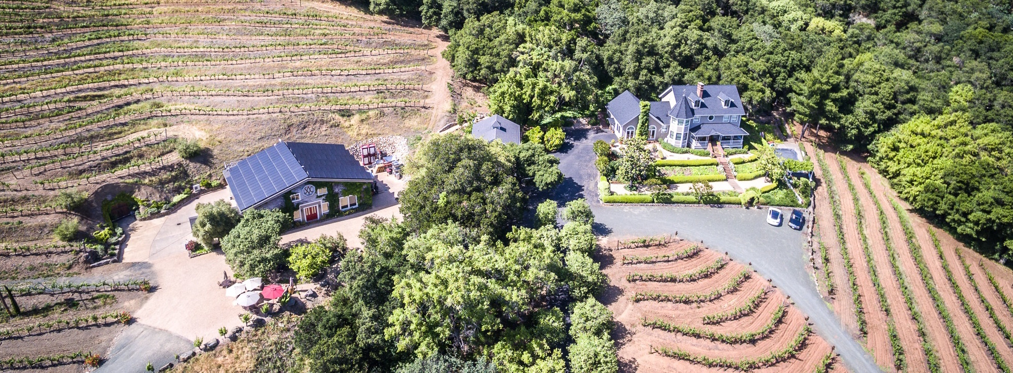 Amizetta Estate aerial view of house and tasting room